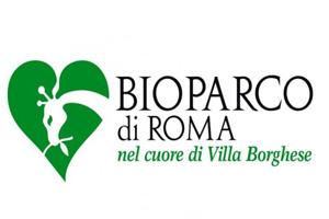 Accademia di Trucco Professionale Roma corsi master corso tatuaggio piercing microblading extension laminazione ciglia trucco sposa personal shopper Bioparco